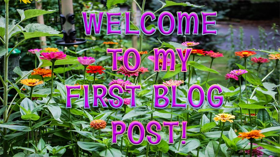My First Blog Post Header